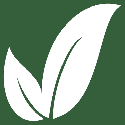 500 Foods Leaf Logo